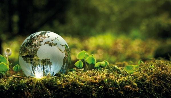 Nachhaltigkeit ist das Gebot der Stunde, um unsere Natur zu schützen. Möglichkeiten gibt es dazu viele (Quelle: Shutterstock)