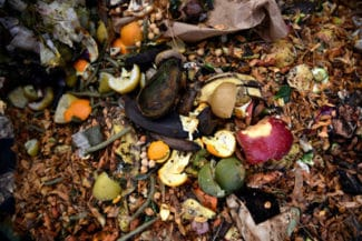 Das neue Material schließt eine erhebliche Angebotslücke bei kompostierbaren Thermoetikettenmaterialien (Quelle: Avery Dennison)