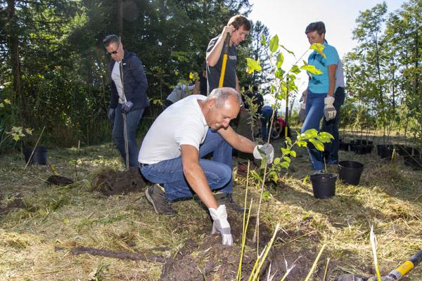 Etiketten Carini aus Lustenau pflanzte im April 2021 im Bleischwald bei Bludenz die ersten Jungbäume (Quelle: Etiketten Carini)